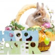 Easter composition — Stock Photo #22708303