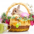 Easter composition — Stock Photo #22708331
