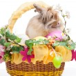 Easter composition — Stock Photo #22708333