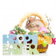 Easter composition — Stock Photo #22708347