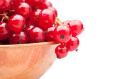 Red currant  in plate — Stock Photo