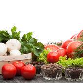 Composizione di pomodori — Foto Stock