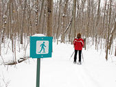 Woman snowshoes on marked path — Stock Photo