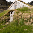 Traditional Icelandic Turf House — Stock Photo #14738739