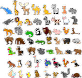 Large set of animals — Stock Vector