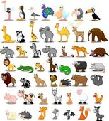 Extra large set of animals including lion, kangaroo, giraffe, elephant, camel, antelope, hippo, tiger, zebra, rhinoceros — Stock Vector