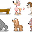 Royalty-Free Stock Vektorfiler: Set cartoon dogs of different breeds