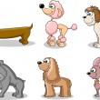 Set cartoon dogs of different breeds — Stock Vector