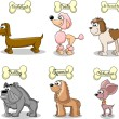 Set cartoon dogs of different breeds — Imagen vectorial