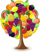 Tree with a variety of fruits, vector — Stock Vector
