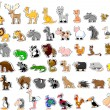 Stock Vector: Large set of animals