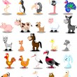 Set of cute cartoon animals and birds — Stock Vector