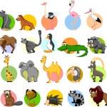 Set of cute cartoon animals — Stock Vector #35803953
