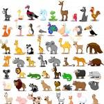 Lion, kangaroo, giraffe, elephant, camel, antelope, hippo, tiger, zebra, rhinoceros — Stock Vector #36344743