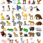 Lion, kangaroo, giraffe, elephant, camel, antelope, hippo, tiger, zebra, rhinoceros — Stock Vector #36344799