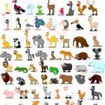 Lion, kangaroo, giraffe, elephant, camel, antelope, hippo, tiger, zebra, rhinoceros — Stock Vector #36344811