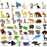 Lion, kangaroo, giraffe, elephant, camel, antelope, hippo, tiger, zebra, rhinoceros — Stock Vector #36344831