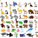 Leone, canguro, giraffa, elefante, cammello, antilope, ippopotamo, tigre, zebra, rinoceronte — Vettoriale Stock  #36346953