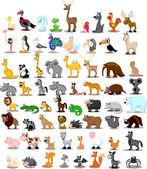 Lion, kangaroo, giraffe, elephant, camel, antelope, hippo, tiger, zebra, rhinoceros — Stock Vector