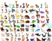 Лев, кенгуру, Жираф, слон, верблюд, антилопы, бегемот, тигр, Зебра, носорог — Cтоковый вектор