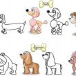 ������, ������: Set cartoon dogs of different breeds