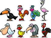Cartone animato uccelli — Vettoriale Stock