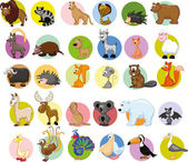 Set of different animals and birds — Stock Vector
