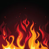 Burning fire — Stock Vector