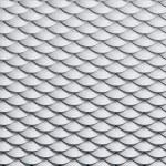Seamless amphibian skin texture — Stock Photo