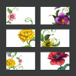Spring flower collection — Stock Photo