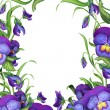 Floral frame with green leaves and viola flowers border — Stock Photo