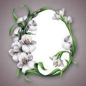 Białe kwiaty albumu ramki — Zdjęcie stockowe
