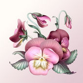 Bunch of vintage pink pansy flowers — Stock Photo