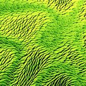 Zielona skóra tekstura — Zdjęcie stockowe