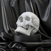 3d anatomical skull model — Stock Photo
