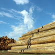 Stock Photo: LUMBER DEPOT