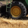 Combine harvester working in wheat field — Stock Video
