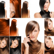 Fashion hairstyle collage, natural long shiny healthy hair - Stock Photo