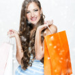 A portrait of a beautiful woman holding shopping bags — Stock Photo