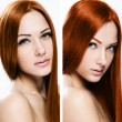 Stock Photo: Portraits of Beautiful Womwith Healthy Long Hair