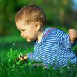 Beautiful baby boy sitting among green grass on spring lawn — Stock Photo