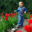 Happy baby boy running the flower garden — Stock Photo