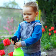 Cute baby boy irrigating flowers in colorful garden — Stock Photo #13549282