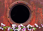 Round window frame on rusty metal surface background and peach blossom branch — Fotografia Stock