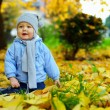 Cute baby boy among fallen leaves in autumn park — Stock Photo #13551416