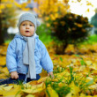 Cute baby boy among fallen leaves in autumn park — Stock Photo #13551418