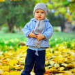 Cute baby boy stands among fallen leaves in autumn park — Stock Photo