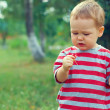 Cute baby boy eating sour cherry outdoor — Stock Photo