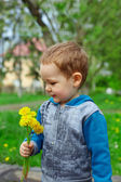 Cute baby boy holding a bunch of dandelion flowers on spring meadow — Stock Photo