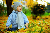 Cute baby boy among fallen leaves in autumn park — Stock Photo